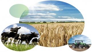 Nabór na rachmistrza do Powszechnego Spisu Rolnego 2020
